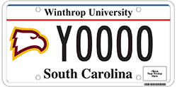 newlicenseplate