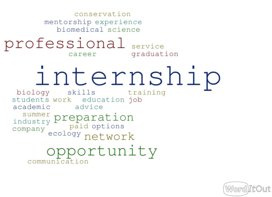 Internship word cloud 3