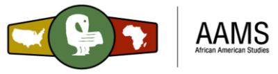 small 500 aams logo